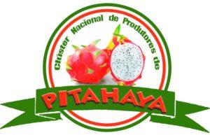 cluster pitahaya